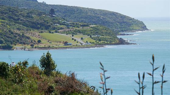 Raglan Coastal Reserve Management Plan