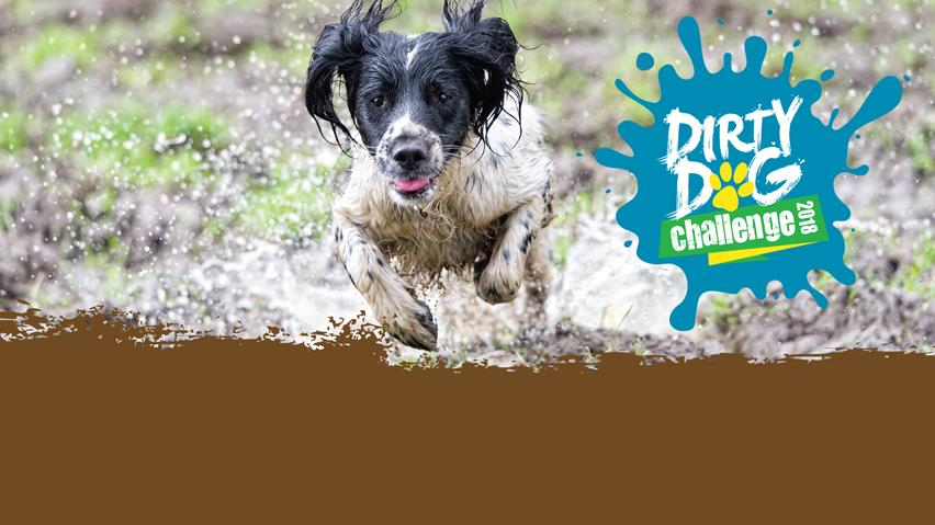 Take up the Dirty Dog Challenge