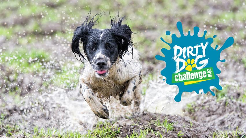Dirty Dog Challenge 2018