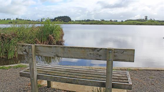 Lake Rotokauri