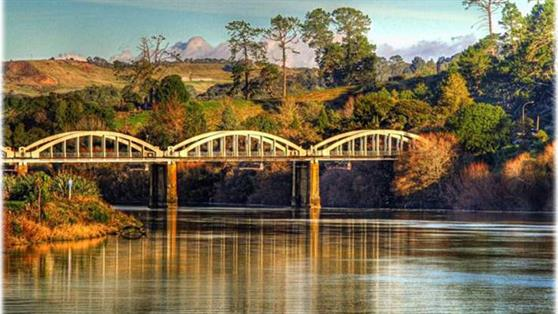 Tuakau Bridge by Bob Prangnell