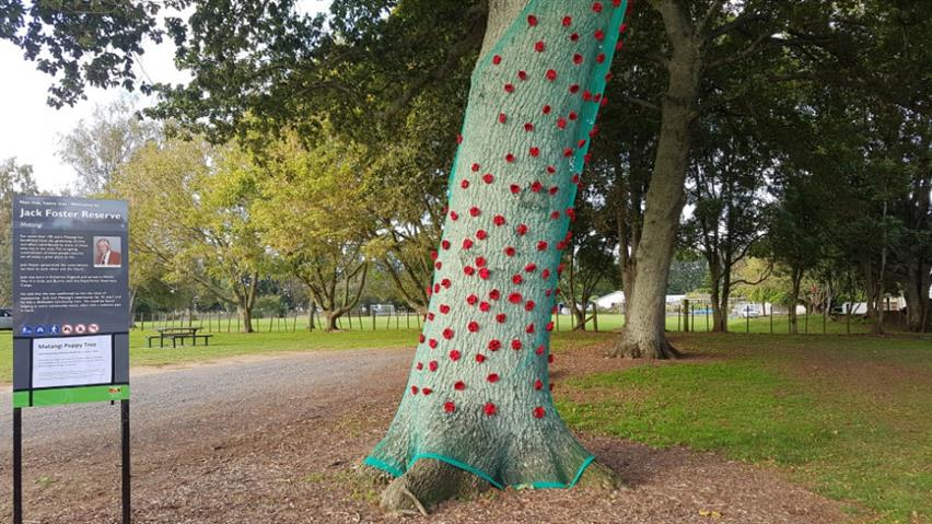 Matangi-tree-3-cropped