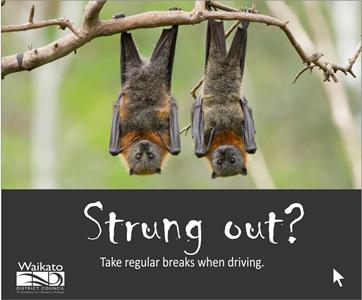 Road safety campaign - Strung out