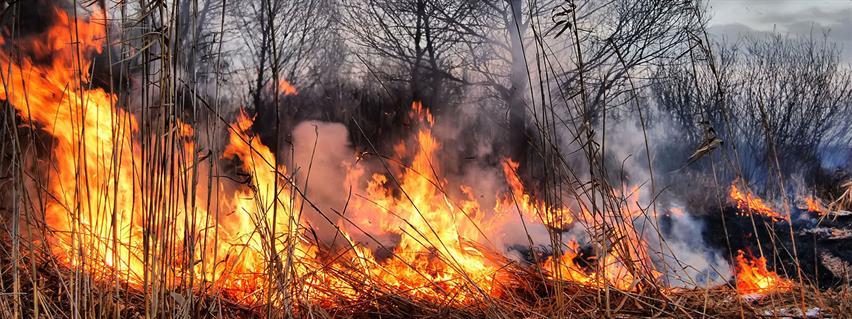 Rural Fire