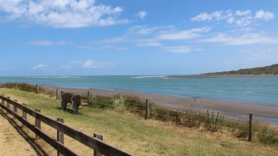 Wainamu Beach in Raglan