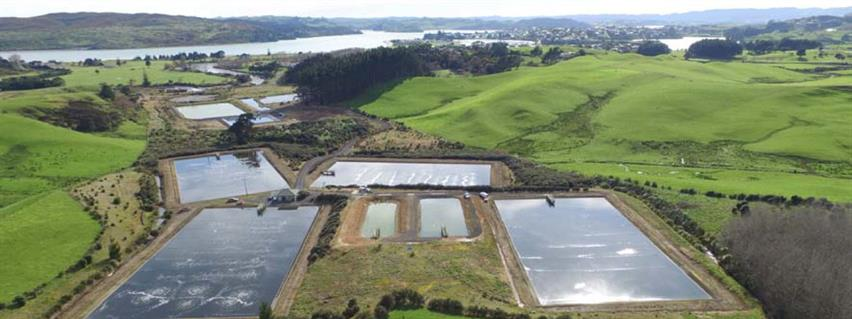 Raglan wastewater treatment plant