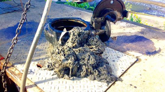 Yuck stuff found in the pump