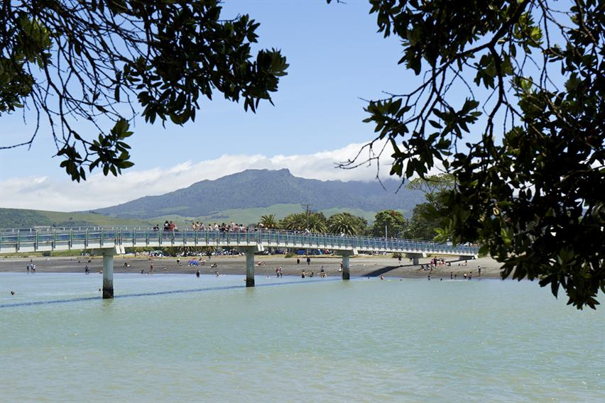 View of the walk bridge in Raglan